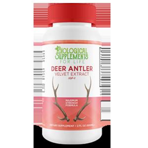 deer-antler